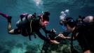 How To Participate in a Dive Against Debri